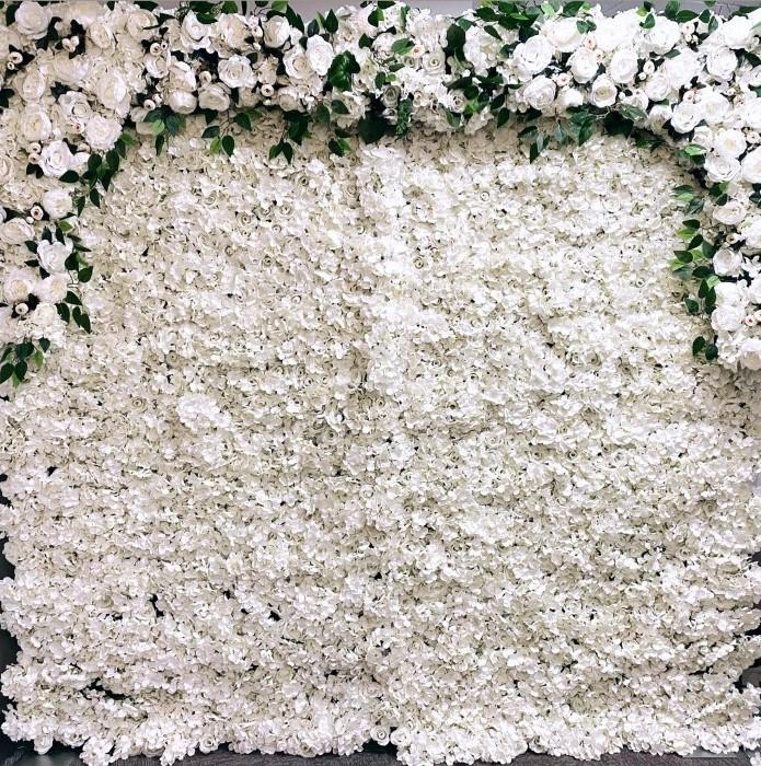 Ivory Rose Wall Rental Charlotte NC
